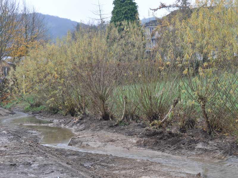 renaturierung-alpenbach-van-boekel-gmbh